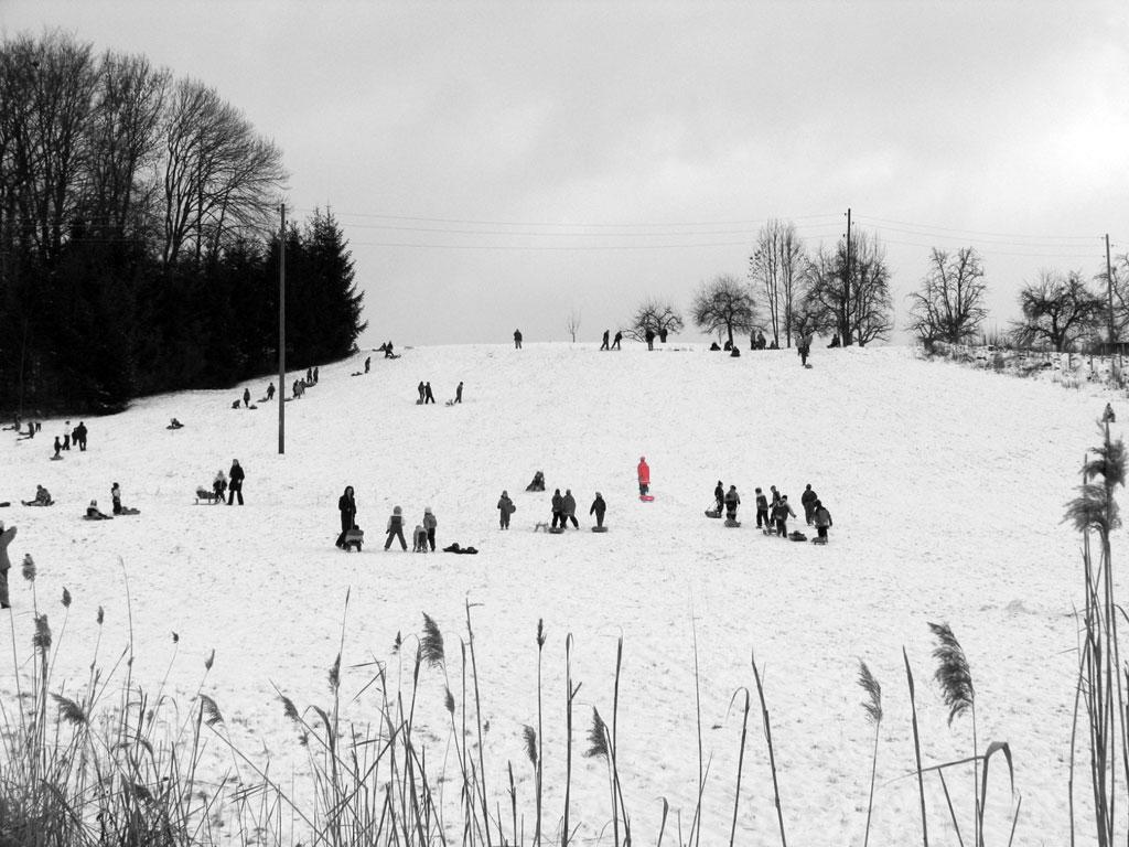 Kinder auf schneebedecktem Rodelhang